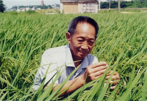袁隆平院士-联合会名誉会长