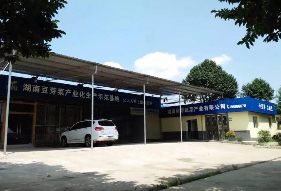 竞博jbo下载风采(31)湖南萌芽蔬菜产业有限公司